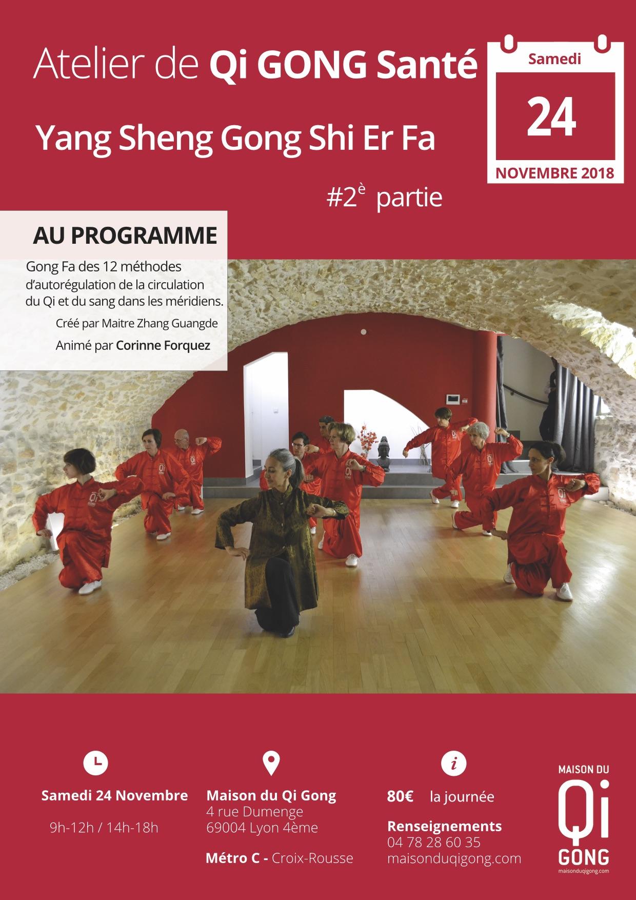 affiche Yang Sheng Gong Shi Er Fa 2eme partie